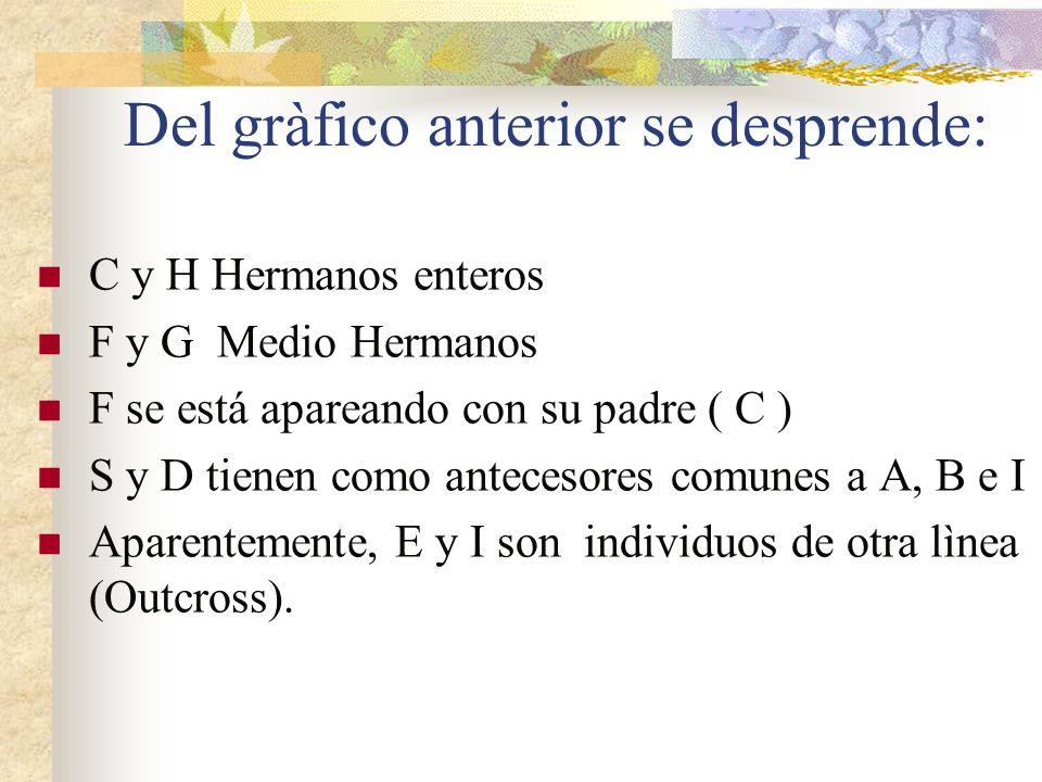 Del gràfico anterior se desprende: C y H Hermanos enteros F y G Medio Hermanos F se está apareando con su padre ( C ) S y D tienen como antecesores co