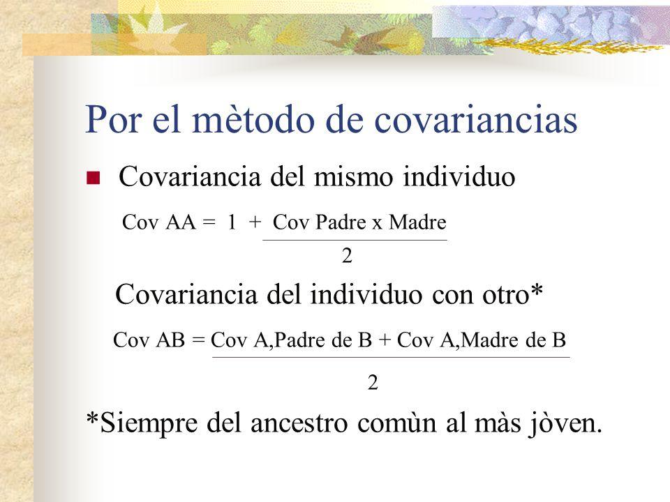 Por el mètodo de covariancias Covariancia del mismo individuo Cov AA = 1 + Cov Padre x Madre 2 Covariancia del individuo con otro* Cov AB = Cov A,Padr