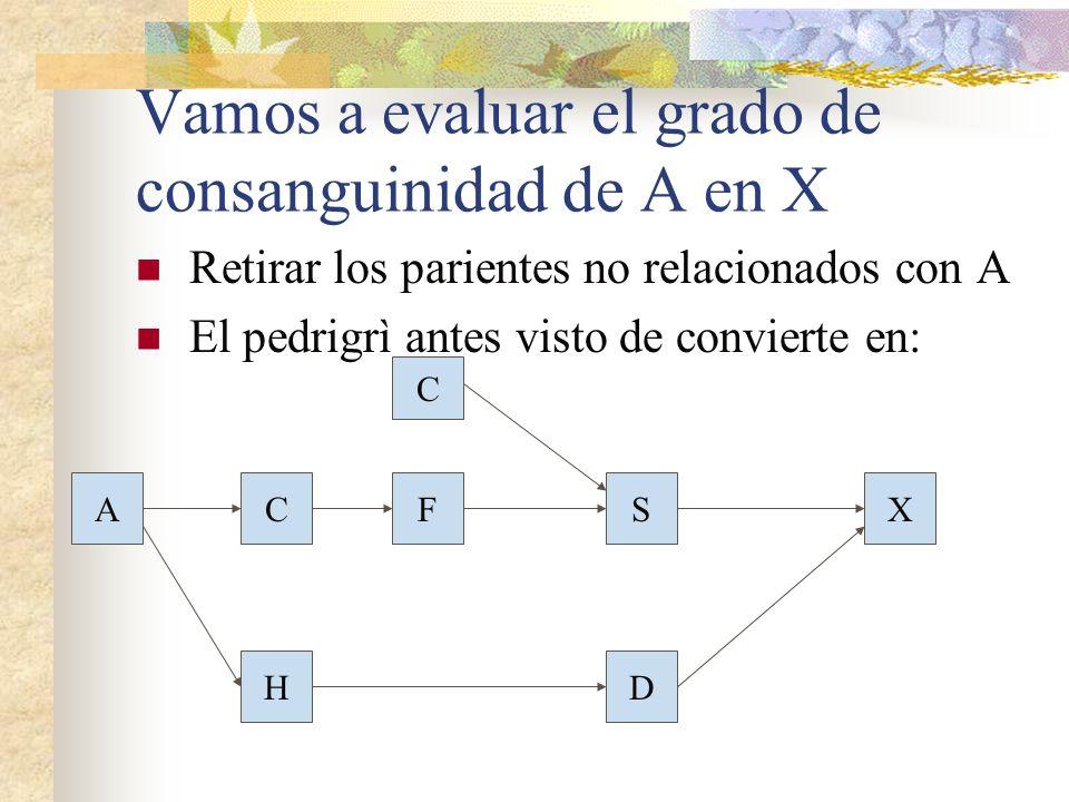 Vamos a evaluar el grado de consanguinidad de A en X Retirar los parientes no relacionados con A El pedrigrì antes visto de convierte en: AF HD XS C C