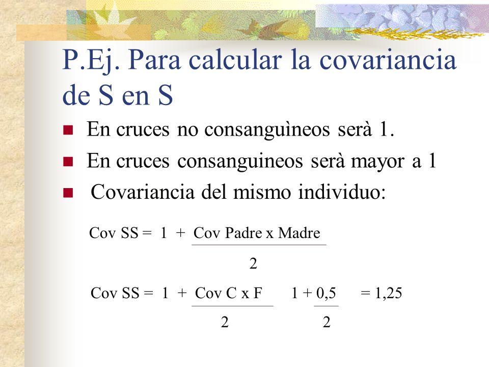 P.Ej. Para calcular la covariancia de S en S En cruces no consanguìneos serà 1. En cruces consanguineos serà mayor a 1 Covariancia del mismo individuo