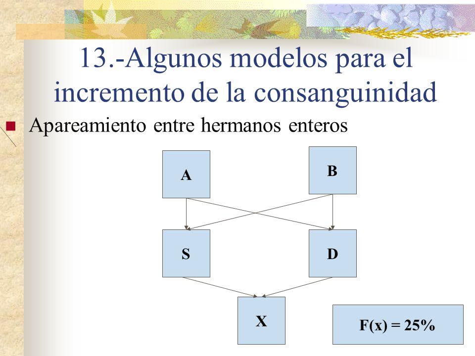13.-Algunos modelos para el incremento de la consanguinidad Apareamiento entre hermanos enteros X SD A B F(x) = 25%