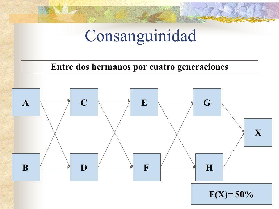 Consanguinidad CA BDFH E X G Entre dos hermanos por cuatro generaciones F(X)= 50%