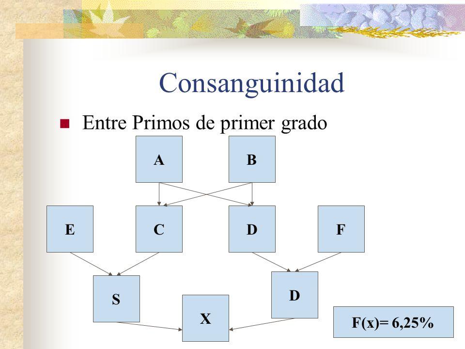 Consanguinidad Entre Primos de primer grado D D S FEC BA X F(x)= 6,25%