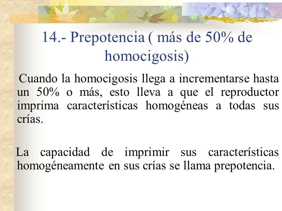 14.- Prepotencia ( más de 50% de homocigosis) Cuando la homocigosis llega a incrementarse hasta un 50% o más, esto lleva a que el reproductor imprima