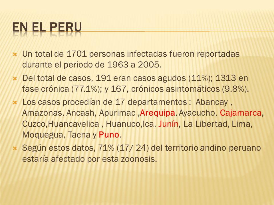 BASADO EN LA NECROPSIA: OBSERVACION DE LESIONES HEPATICAS PRESENCIA DE PARASITOS INMADUROS