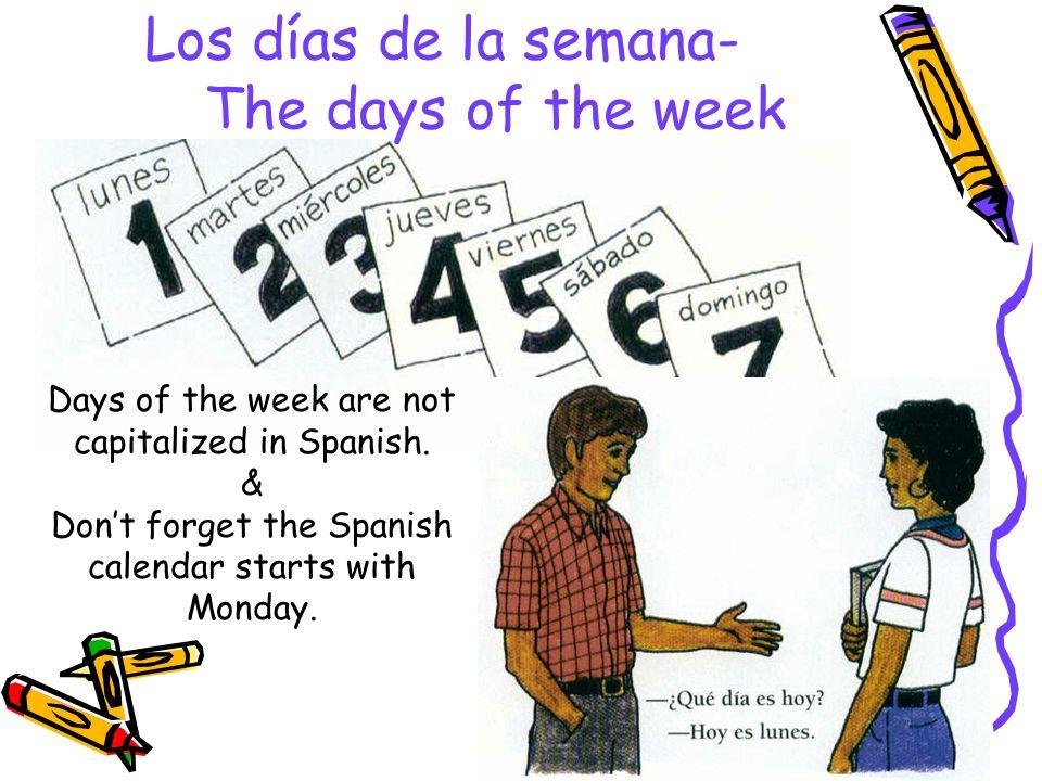 Los meses del año- The months of the year -¿Cuál es la fecha de hoy.