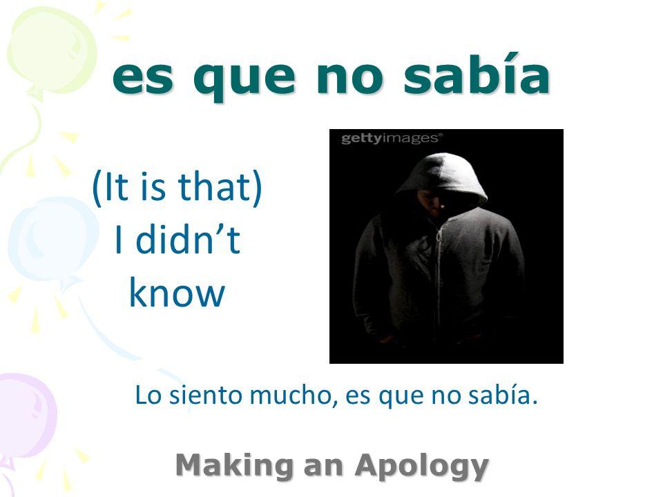 no lo haré más Making an Apology I wont do it anymore Lo siento mucho. ¡No lo haré más!