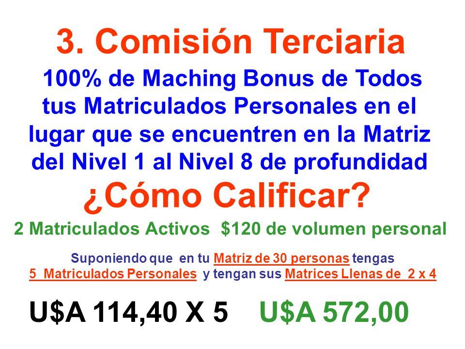 3. Comisión Terciaria 100% de Maching Bonus de Todos tus Matriculados Personales en el lugar que se encuentren en la Matriz del Nivel 1 al Nivel 8 de