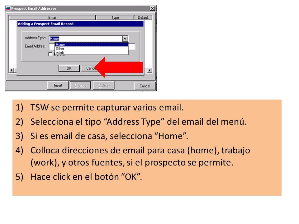 1)TSW se permite capturar varios email. 2)Selecciona el tipo Address Type del email del menú.