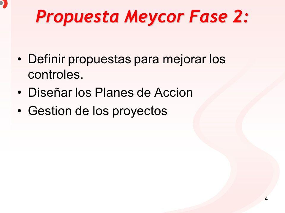Propuesta Meycor Fase 2: Definir propuestas para mejorar los controles. Diseñar los Planes de Accion Gestion de los proyectos 4