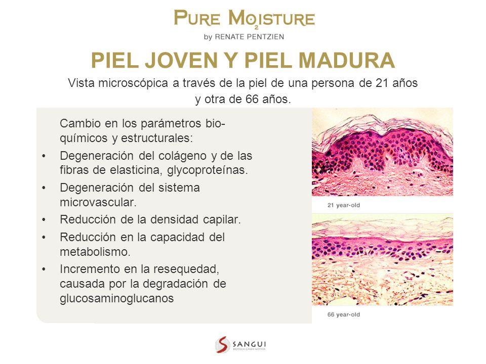 NANO TECHNOLOGY COSMETICS PIEL JOVEN Y PIEL MADURA Vista microscópica a través de la piel de una persona de 21 años y otra de 66 años. Cambio en los p