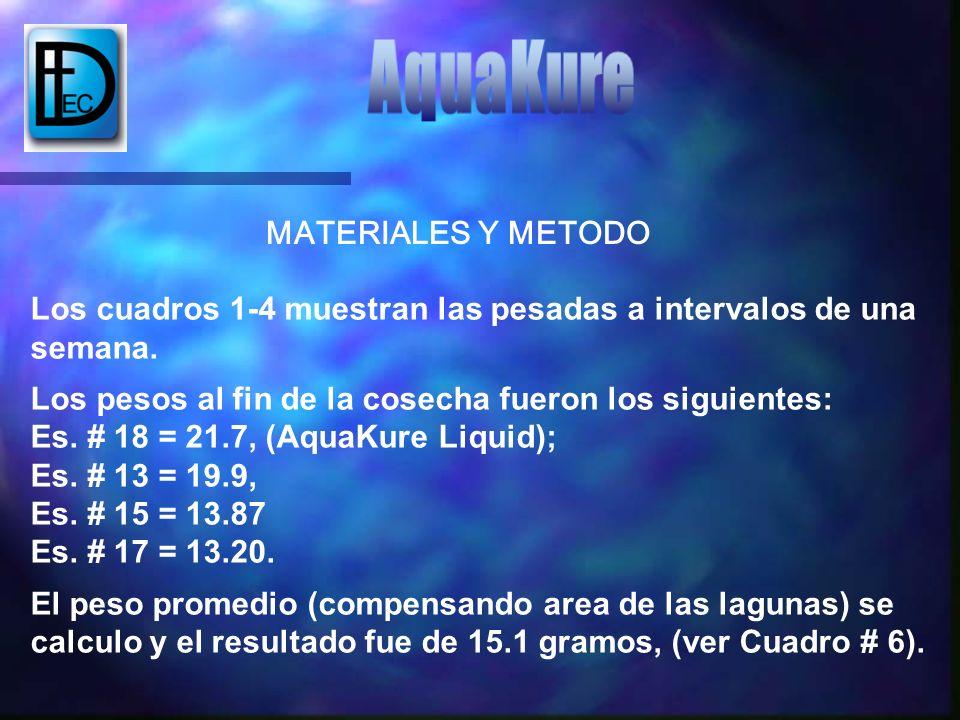 Los cuadros 1-4 muestran las pesadas a intervalos de una semana. Los pesos al fin de la cosecha fueron los siguientes: Es. # 18 = 21.7, (AquaKure Liqu