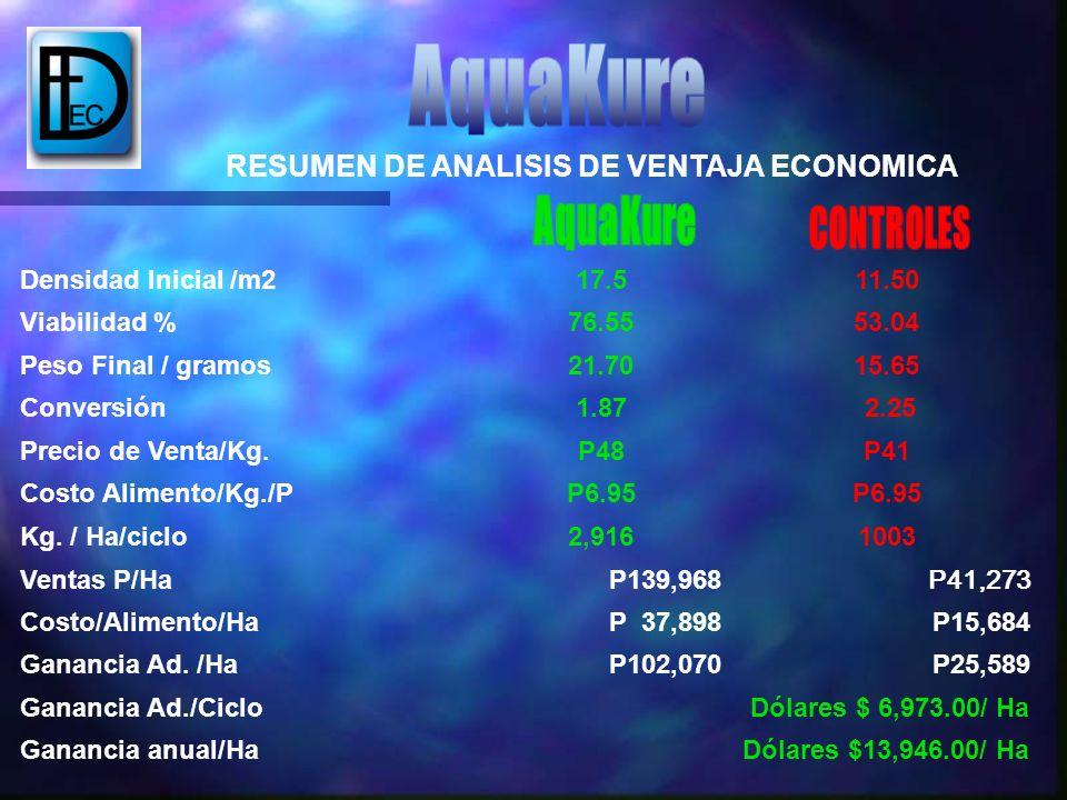 Densidad Inicial /m217.511.50 Viabilidad %76.5553.04 Peso Final / gramos21.7015.65 Conversión1.87 2.25 Precio de Venta/Kg.P48P41 Costo Alimento/Kg./PP