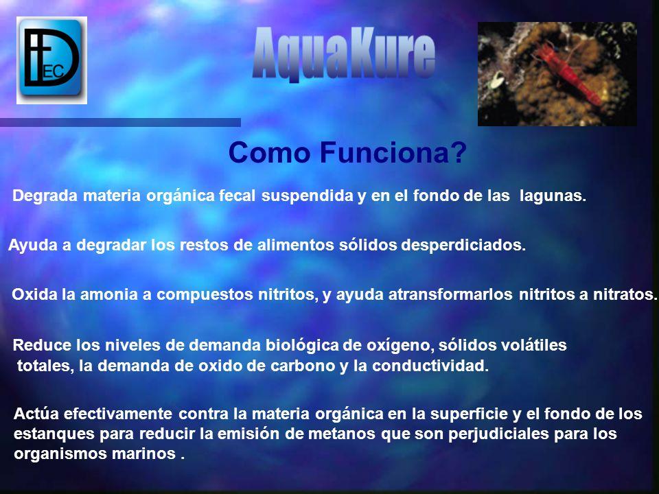Niveles de sólidos y otras materias orgánicas que consumen el oxígeno Con AQUAKURE UD.