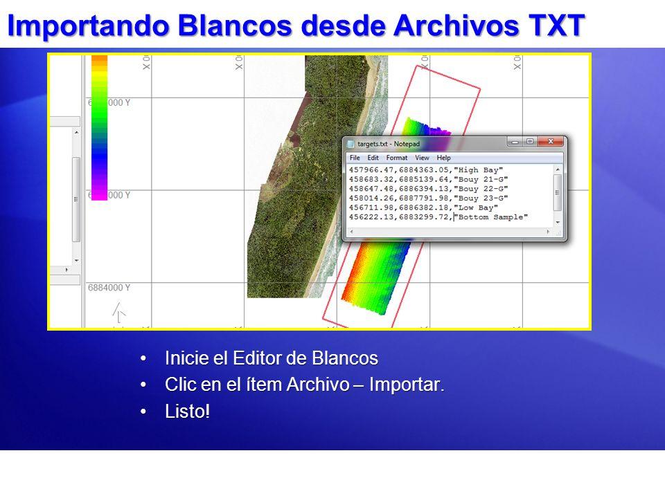 Importando Blancos desde Archivos TXT Inicie el Editor de BlancosInicie el Editor de Blancos Clic en el ítem Archivo – Importar.Clic en el ítem Archiv