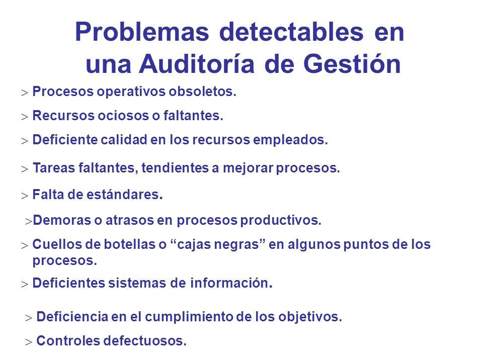 Problemas detectables en una Auditoría de Gestión Procesos operativos obsoletos. Recursos ociosos o faltantes. Deficiente calidad en los recursos empl