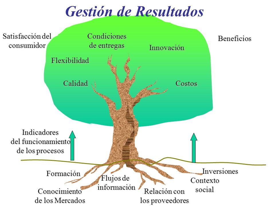 Satisfacción del consumidor Beneficios Flexibilidad Calidad Condiciones de entregas Innovación Costos Indicadores del funcionamiento de los procesos F