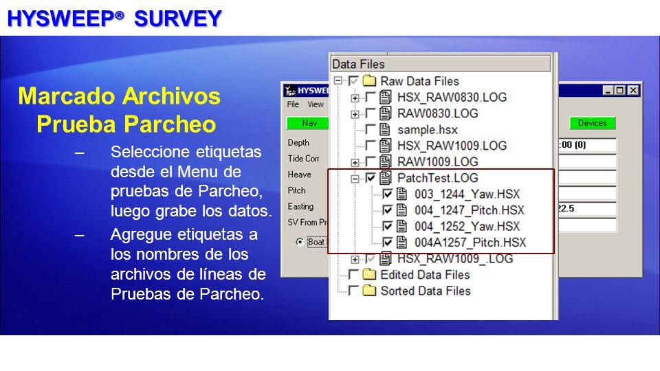 HYSWEEP ® SURVEY Marcado Archivos Prueba Parcheo –Seleccione etiquetas desde el Menu de pruebas de Parcheo, luego grabe los datos. –Agregue etiquetas