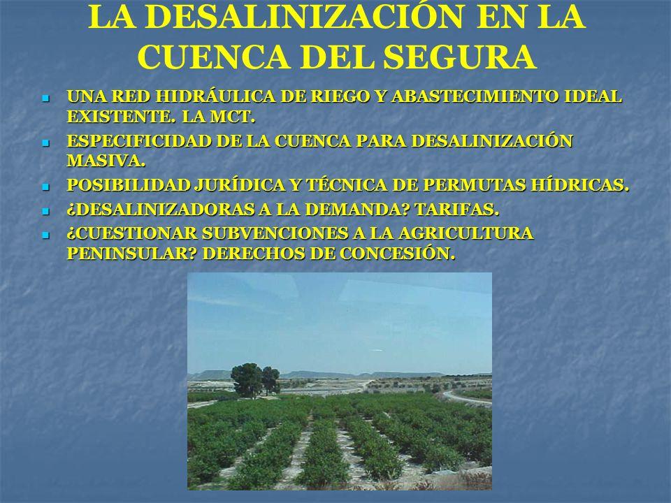 LA DESALINIZACIÓN EN LA CUENCA DEL SEGURA UNA RED HIDRÁULICA DE RIEGO Y ABASTECIMIENTO IDEAL EXISTENTE. LA MCT. UNA RED HIDRÁULICA DE RIEGO Y ABASTECI