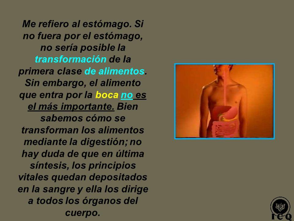 LOS ALIMENTOS QUE PENETRAN A NUESTRO ORGANISMO, SE DIVIDEN EN TRES CATEGORÍAS. AL PRIMER TIPO DEL ALIMENTO, LO PODEMOS DENOMINAR