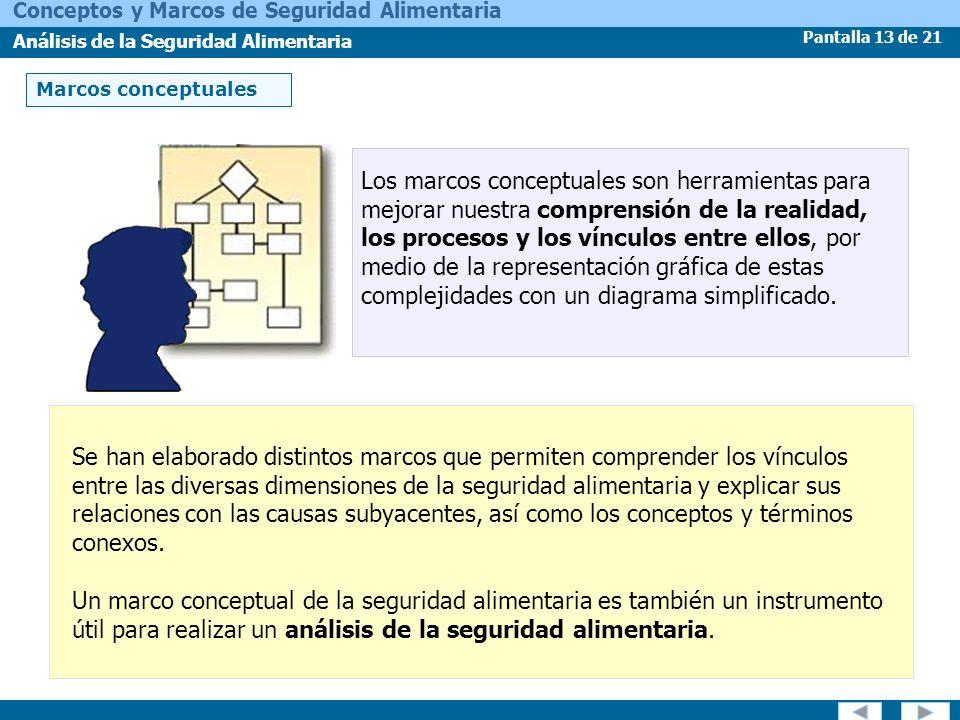 Pantalla 13 de 21 Conceptos y Marcos de Seguridad Alimentaria Análisis de la Seguridad Alimentaria Marcos conceptuales Los marcos conceptuales son her