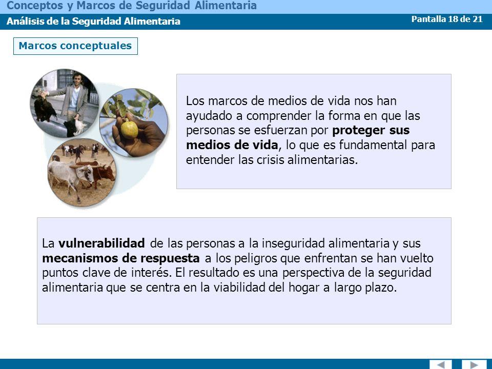 Pantalla 18 de 21 Conceptos y Marcos de Seguridad Alimentaria Análisis de la Seguridad Alimentaria Marcos conceptuales Los marcos de medios de vida no