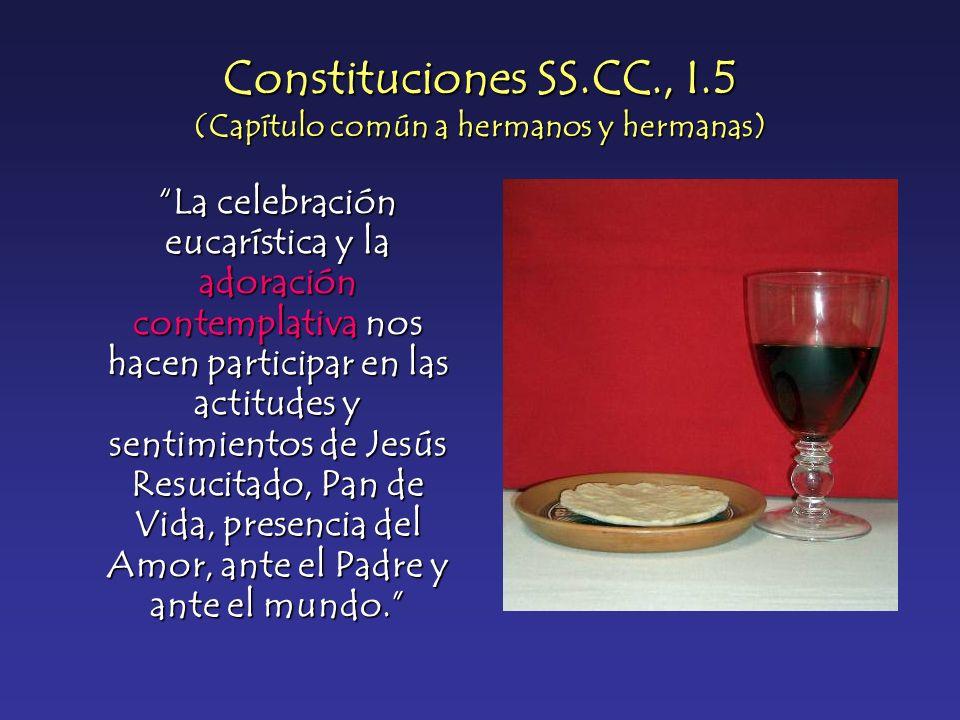 Constituciones SS.CC., I.5 (Capítulo común a hermanos y hermanas) La celebración eucarística y la adoración contemplativa nos hacen participar en las