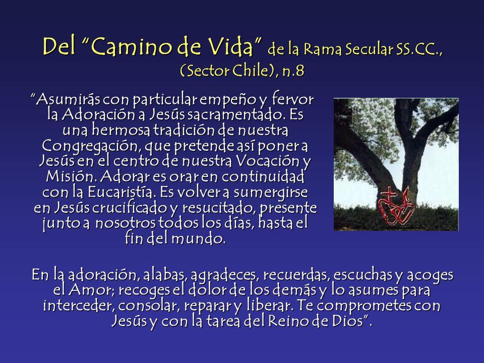 Del Camino de Vida de la Rama Secular SS.CC., (Sector Chile), n.8 Asumirás con particular empeño y fervor la Adoración a Jesús sacramentado. Es una he