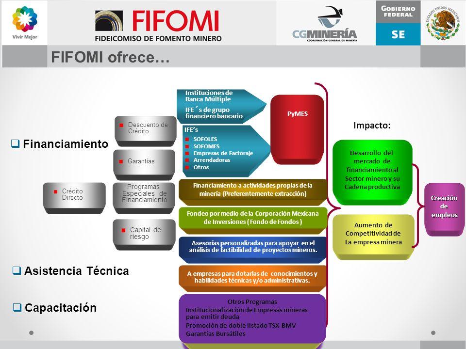 FIFOMI ofrece…. Asesorías personalizadas para apoyar en el análisis de factibilidad de proyectos mineros. A empresas para dotarlas de conocimientos y