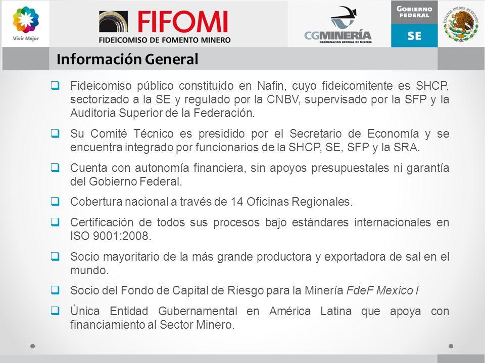 Fideicomiso de Fomento Minero Puente de Tecamachalco No.