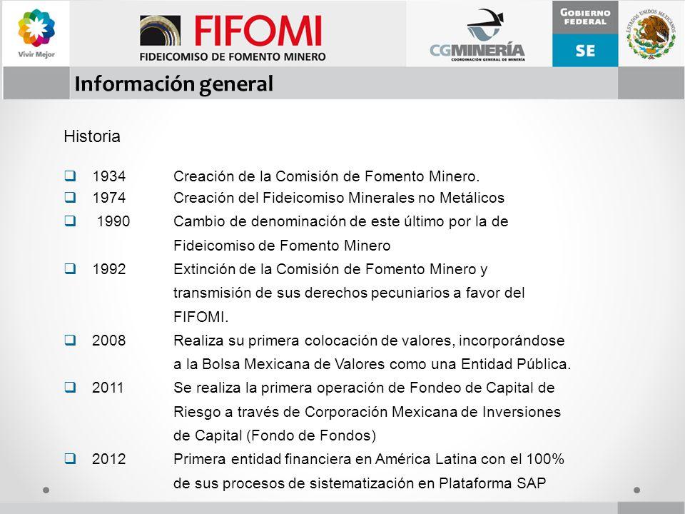 II El Sector Minero en México