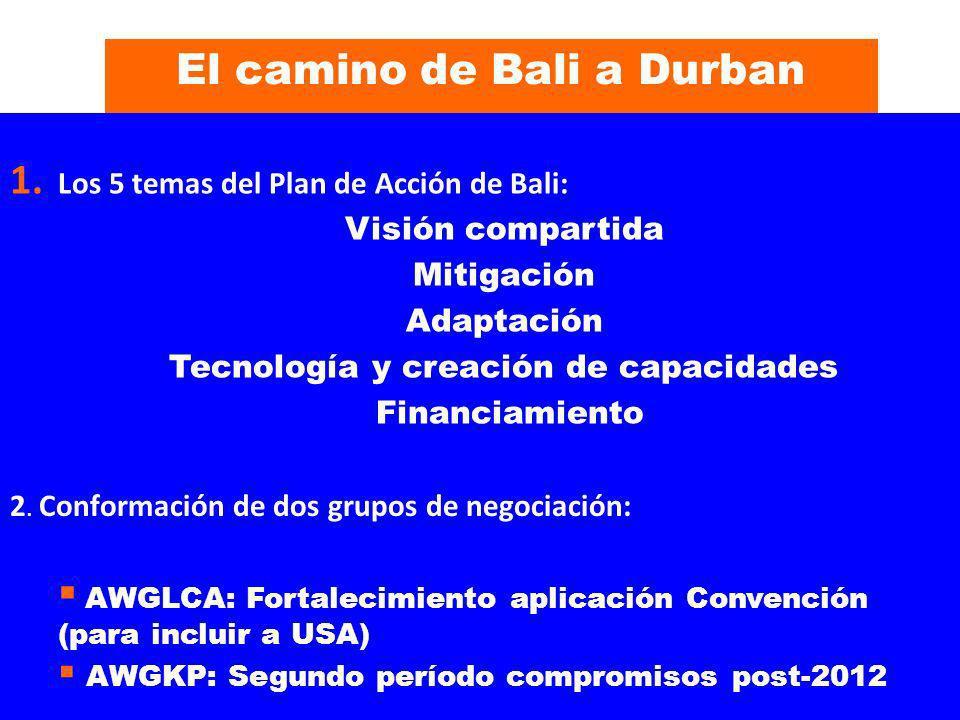 El camino de Bali a Durban 1. Los 5 temas del Plan de Acción de Bali: Visión compartida Mitigación Adaptación Tecnología y creación de capacidades Fin