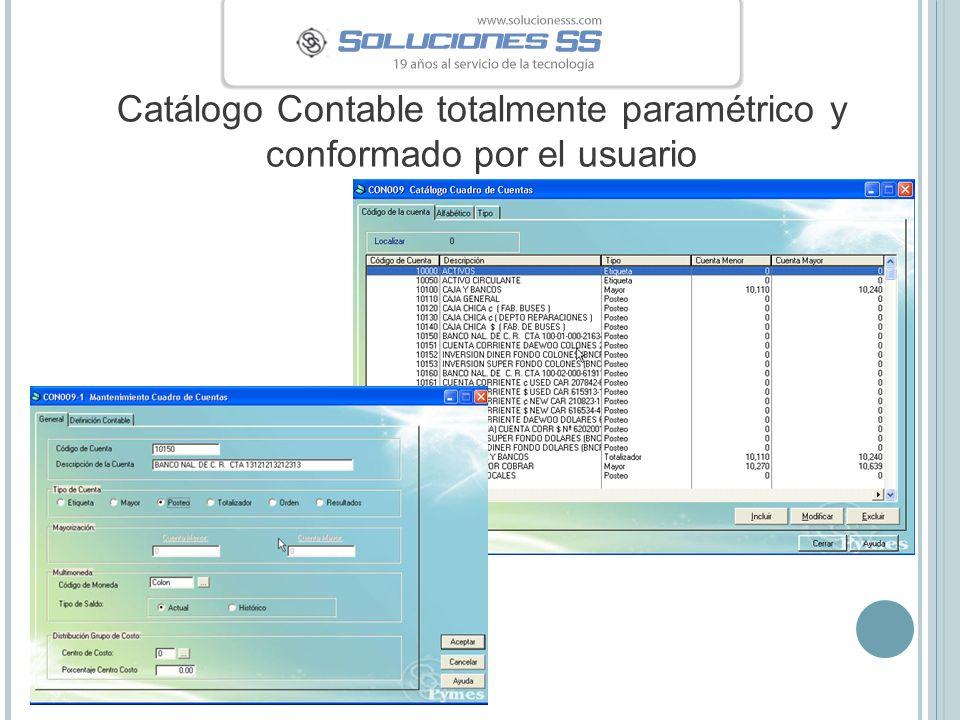 Catálogo Contable totalmente paramétrico y conformado por el usuario