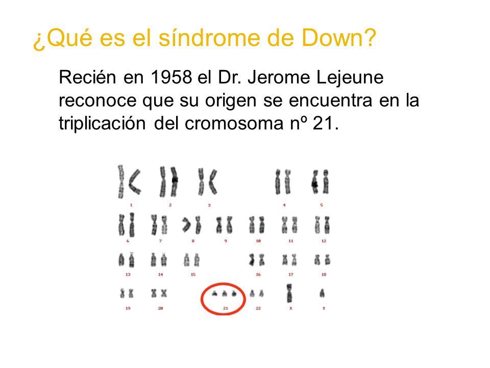 Recién en 1958 el Dr. Jerome Lejeune reconoce que su origen se encuentra en la triplicación del cromosoma nº 21. ¿Qué es el síndrome de Down?