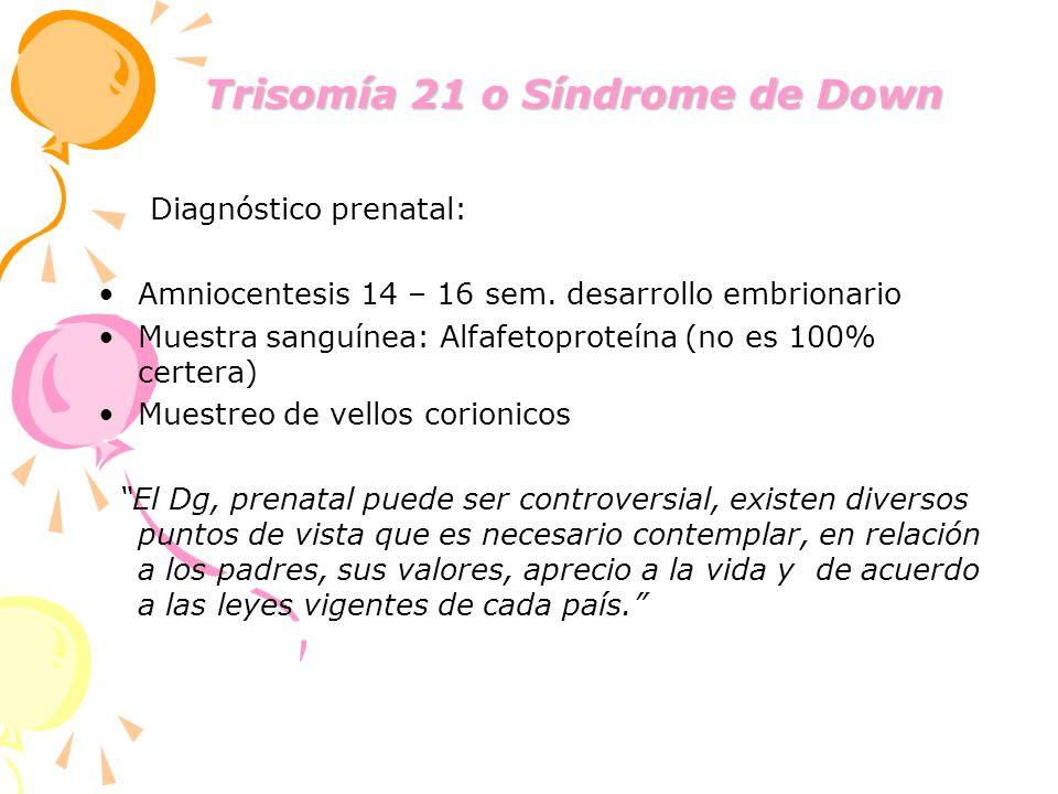 Trisomía 21 o Síndrome de Down Trisomía 21 o Síndrome de Down Diagnóstico prenatal: Amniocentesis 14 – 16 sem. desarrollo embrionario Muestra sanguíne