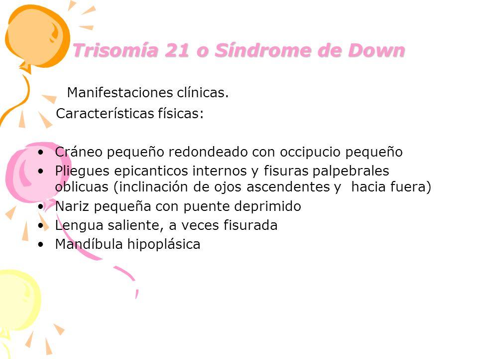 Trisomía 21 o Síndrome de Down Manifestaciones clínicas. Características físicas: Cráneo pequeño redondeado con occipucio pequeño Pliegues epicanticos