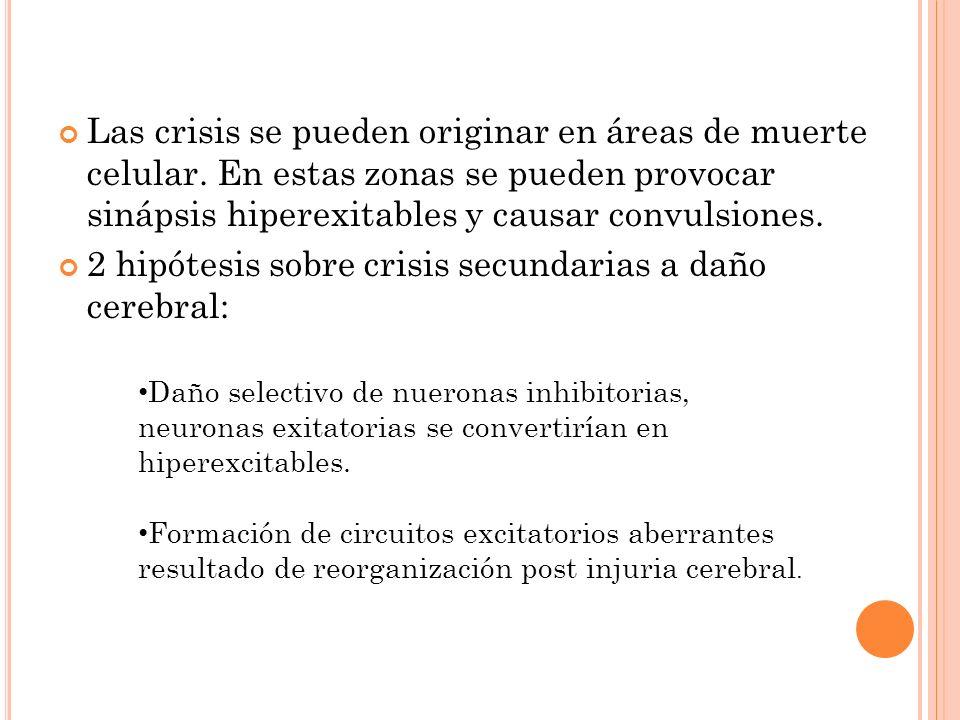 Las crisis se pueden originar en áreas de muerte celular. En estas zonas se pueden provocar sinápsis hiperexitables y causar convulsiones. 2 hipótesis