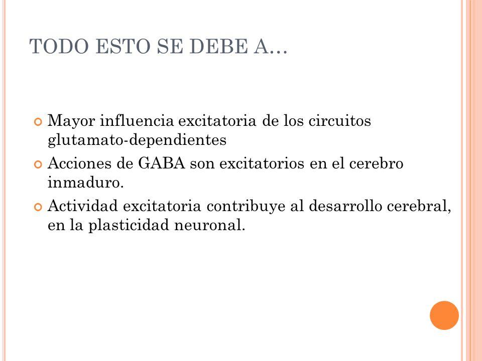TODO ESTO SE DEBE A… Mayor influencia excitatoria de los circuitos glutamato-dependientes Acciones de GABA son excitatorios en el cerebro inmaduro. Ac