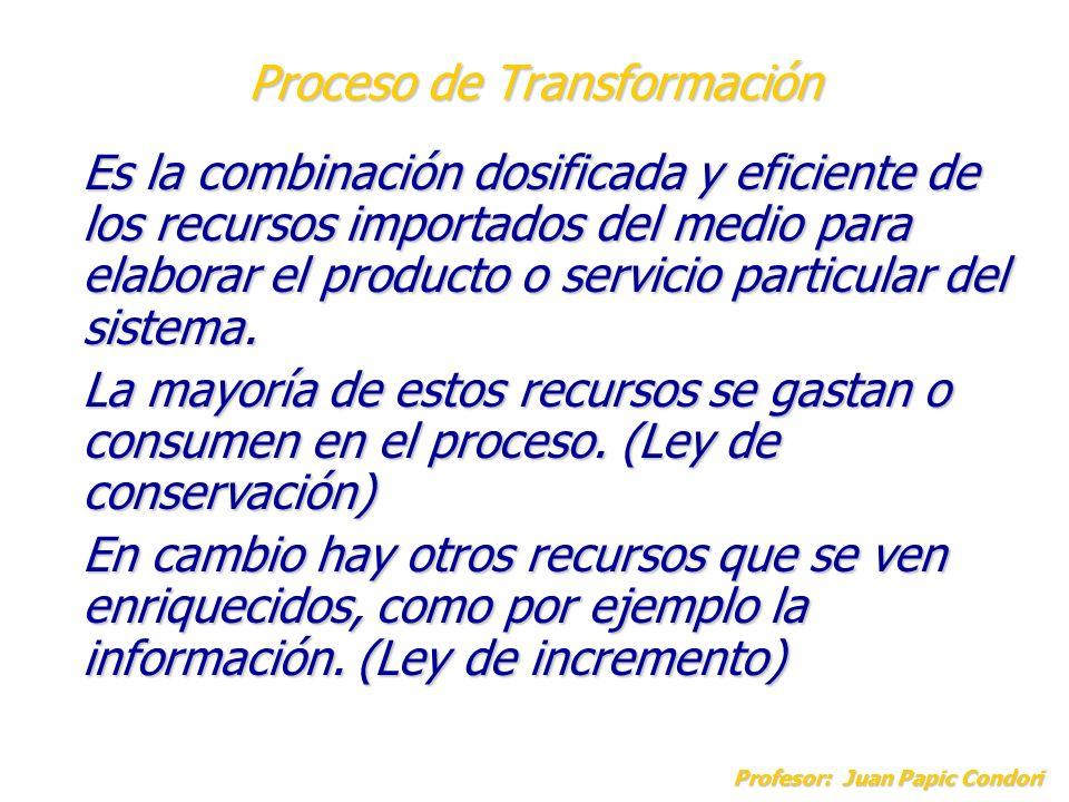 Proceso de Transformación Profesor: Juan Papic Condori Es la combinación dosificada y eficiente de los recursos importados del medio para elaborar el