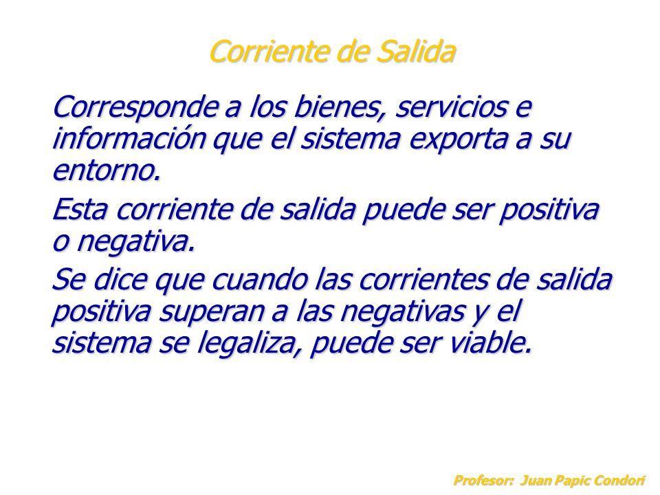 Corriente de Salida Profesor: Juan Papic Condori Corresponde a los bienes, servicios e información que el sistema exporta a su entorno. Esta corriente