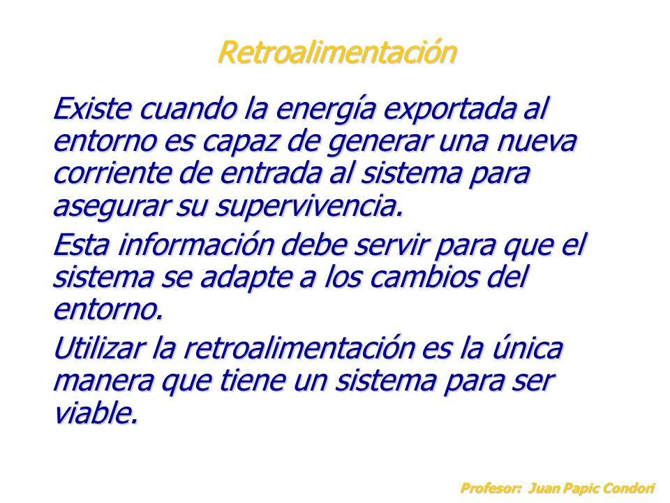 Retroalimentación Profesor: Juan Papic Condori Existe cuando la energía exportada al entorno es capaz de generar una nueva corriente de entrada al sis