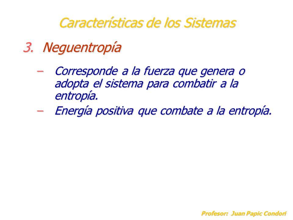 Características de los Sistemas Profesor: Juan Papic Condori 3.Neguentropía –Corresponde a la fuerza que genera o adopta el sistema para combatir a la