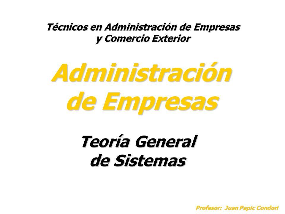 Administración de Empresas Técnicos en Administración de Empresas y Comercio Exterior Teoría General de Sistemas Profesor: Juan Papic Condori