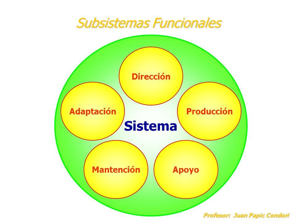 Subsistemas Funcionales Profesor: Juan Papic Condori Profesor: Juan Papic Condori Sistema Dirección AdaptaciónProducción ApoyoMantención
