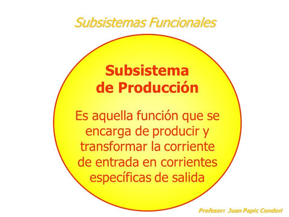 Subsistemas Funcionales Profesor: Juan Papic Condori Profesor: Juan Papic Condori Subsistema de Apoyo Es aquella función que se encarga de hacer posible el proceso productivo del sistema.