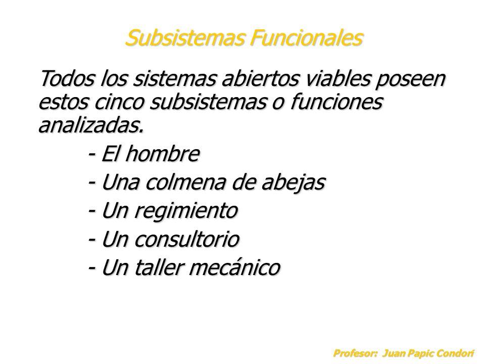 Profesor: Juan Papic Condori Todos los sistemas abiertos viables poseen estos cinco subsistemas o funciones analizadas. - El hombre - Una colmena de a