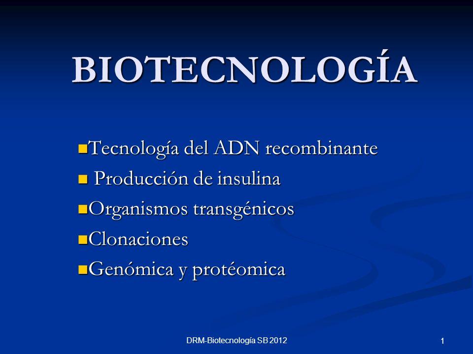 DRM-Biotecnología SB 2012 1 BIOTECNOLOGÍA Tecnología del ADN recombinante Tecnología del ADN recombinante Producción de insulina Producción de insulin