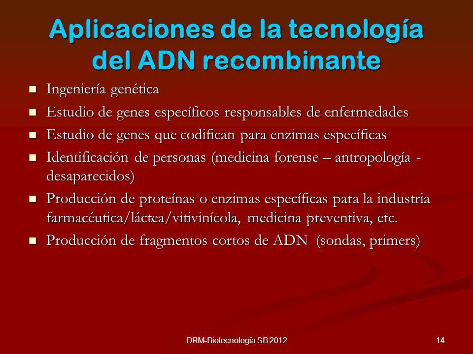 14DRM-Biotecnología SB 2012 Aplicaciones de la tecnología del ADN recombinante Ingeniería genética Ingeniería genética Estudio de genes específicos re