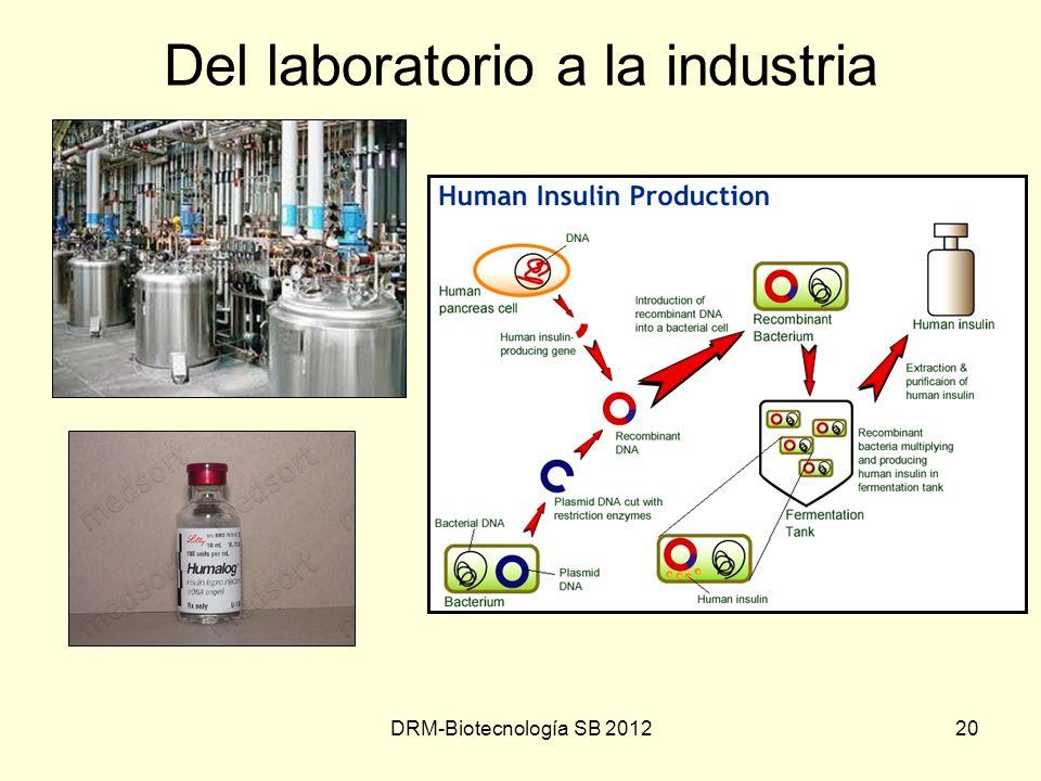 DRM-Biotecnología SB 201220 Del laboratorio a la industria