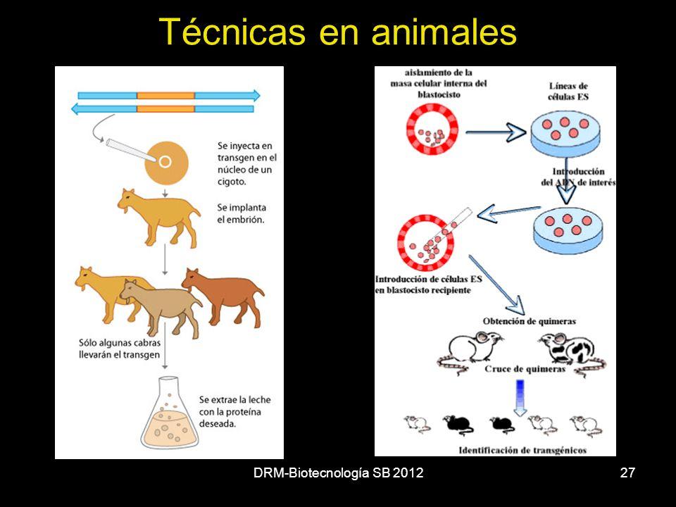 DRM-Biotecnología SB 201227 Técnicas en animales